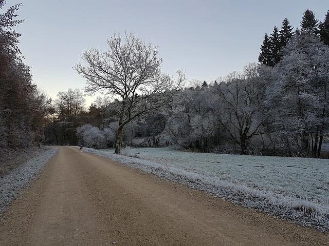 Blankenheim - Schaafbachtal