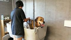 DANA: La douche, j'aime ça! I like the shower!