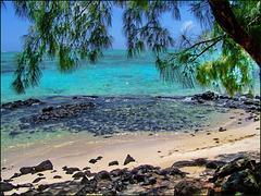 Mauritius (166)