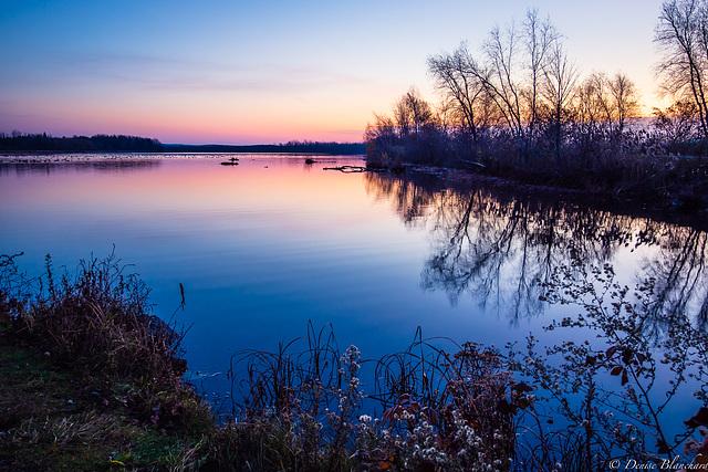 2020novembre07Éveil au lac