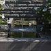 20140801 4427VRAw [D~E] Brunnen, Roseneibisch (Hibiscus), Seerose, Gruga-Park, Essen