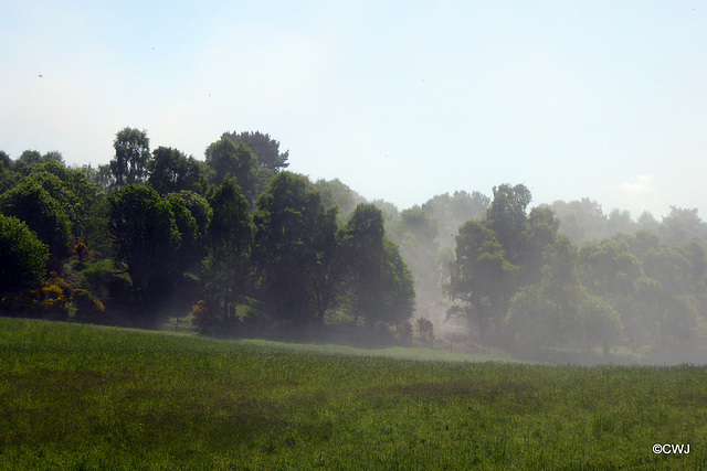 Early morning mist, you might think?