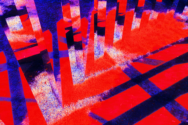 abstract by nature. version in red-blue