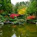 Aus der Farbenpalette des Herbstes - From the colour palette of autumn