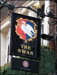The Swan at Bloomsbury