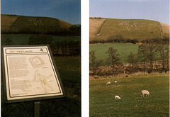 The Cerne Giant/  Cerne Abbas/ Dorset UK