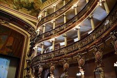 HFF. Teatro Amazonas. Manaus, Brazil