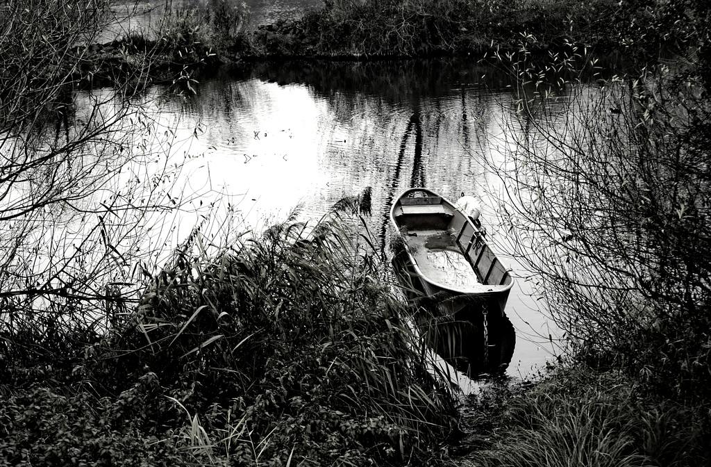 Winteridylle am Main - Winter idyll at the Main river