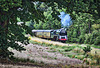 Great Central Railway Thurcaston Leicestershire 25th July 2020