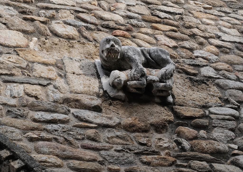 Monestir de Sant Andreu de Sureda L1030364