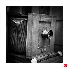 Großformat-Studiokamera, Narita 28x28 cm, 1920 (1 x PiP)