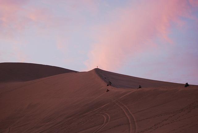 Pour quel bout de désert !