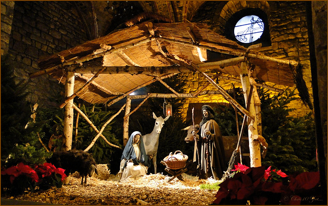 Nativity in Maastricht, Netherlands...
