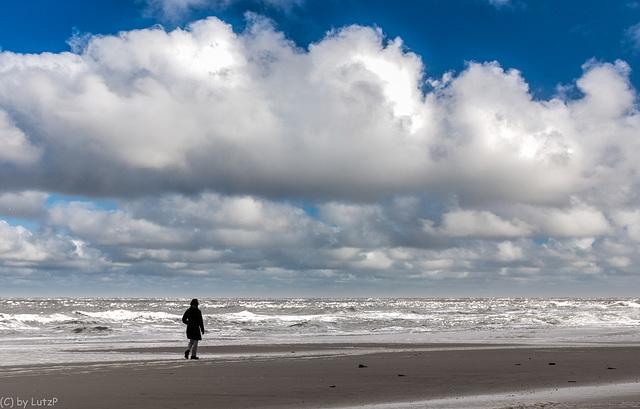 Walking the Beach - Strandspaziergang (270°)