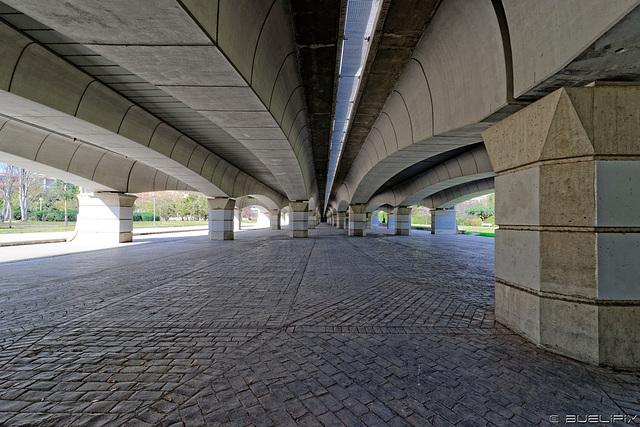 Jardin del Turia - unter der Pont del Regne (© Buelipix)
