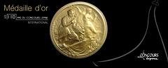 SUNplicity : ora medalo de la Konkurso Lépine 2011, Parizo, atribuita al Alain Bivas