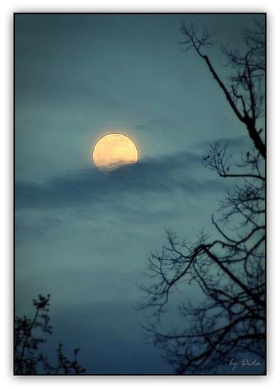 Happy Moon Sunday (◕‿-)