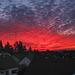 From my Window - Aus meinem Fenster (090°)