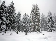 Auffahrt in die Dolomiten