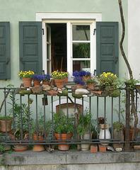 Mini-Stein-Topf-Garten