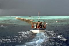 Fahrt in die unendliche Weite des Malediven Atolls