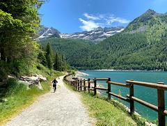 Ceresole Reale Lake fence