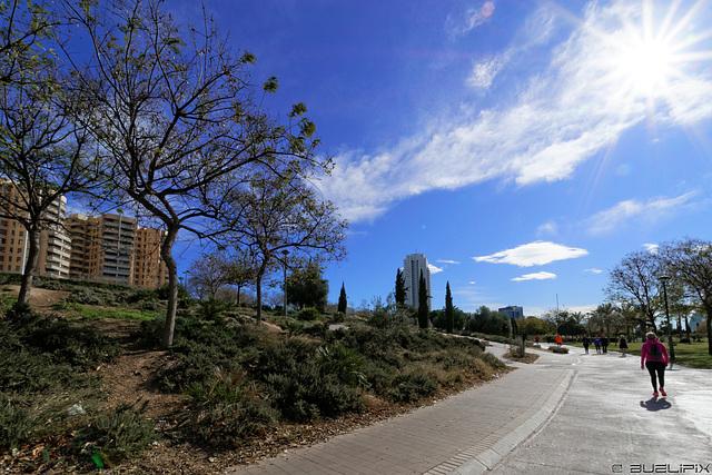 Sonntags im Jardin del Turia (© Buelipix)