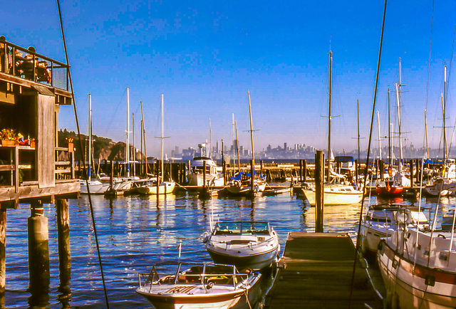 An Afternoon at Sam's Anchor Cafe in Tiburon, CA, Sept. 1978 (165°)