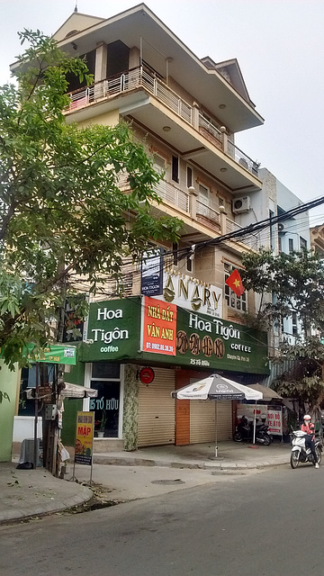 Hoa Tigôn coffee