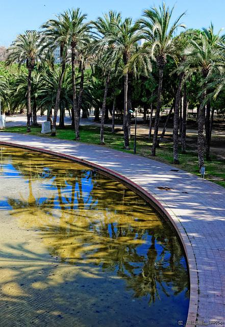 im Jardin del Turia (© Buelipix)