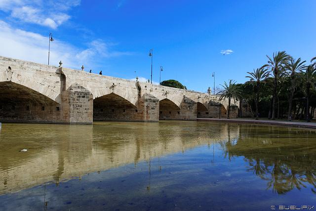 Jardin del Turia - Teich unter der Pont del Mar (© Buelipix)