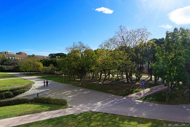 der Jardin del Turia (© Buelipix)