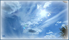 #13.........Bonne Fin De Semaine @++ Face au Soleil