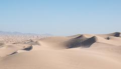 Algodones Dunes / unadorned dunes / Thanksgiving 2020 (# 0612)