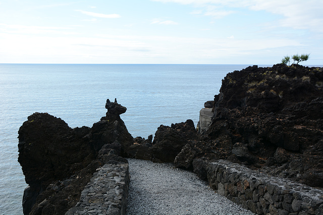 Azores, The Island of Pico, Volcanic Rock Puppy