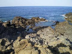 Rugged coast of volcanic rock.