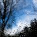 nasse Aussichten