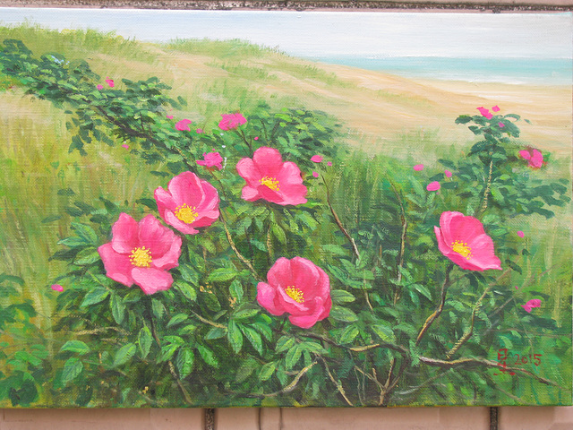 Red Flowers on Seaside/ Rugxaj Floroj apud Maro=해당화가 있는 바닷가 풍경_oil on canvas_27.3x40.9cm(6p)_2014_Song Ho