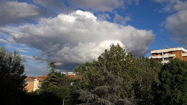 Un cielo così azzurro è tanto tempo che non lo vedevo !