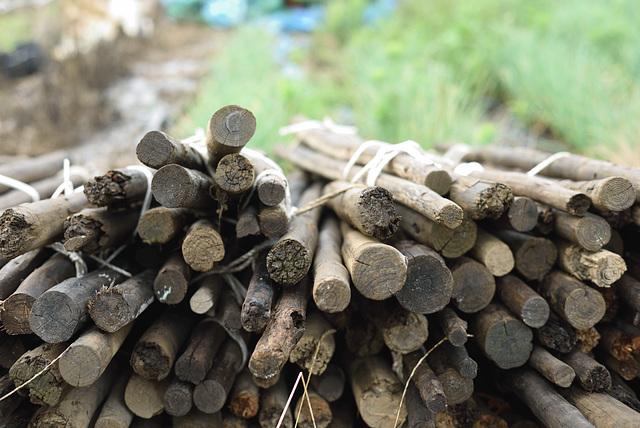 Wood poles for farming
