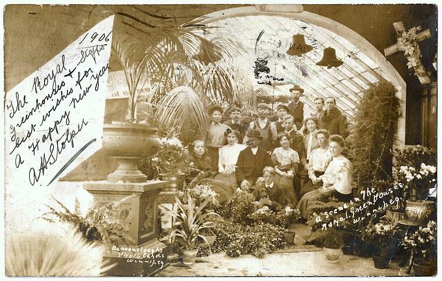 WP1970 WPG - A SCENE IN THE ROYAL GREENHOUSE, WINNIPEG