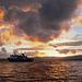 Sunset over Port Ross