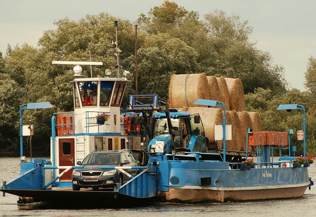 StrohTrocken über die Elbe