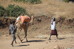 Along the Road, North of Addis Ababa
