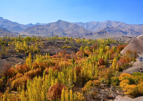 Autumn in Iran