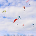 Para-gliders at High & Over 18 9 2021
