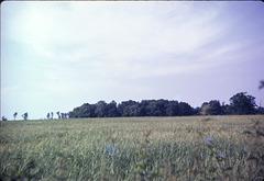 Boundary 97 July 1969 slide 15