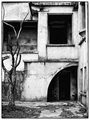 Toter Baum an einem verlassenen Ort (Bokor Hill Station)