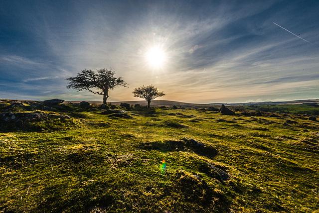 Golden hour at Dartmoor - 20150413
