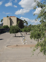 Lineup of curbs & parking meters in a Tucson landscape with trees.